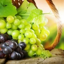 Виноград при псориазе